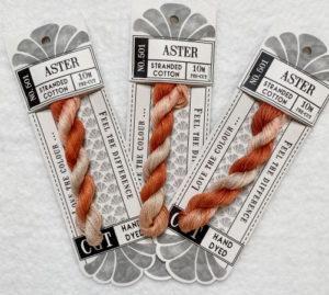 Cottage Garden Threads Aster