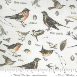Moda Botanicals Birds Nature Parchment by Janet Clare